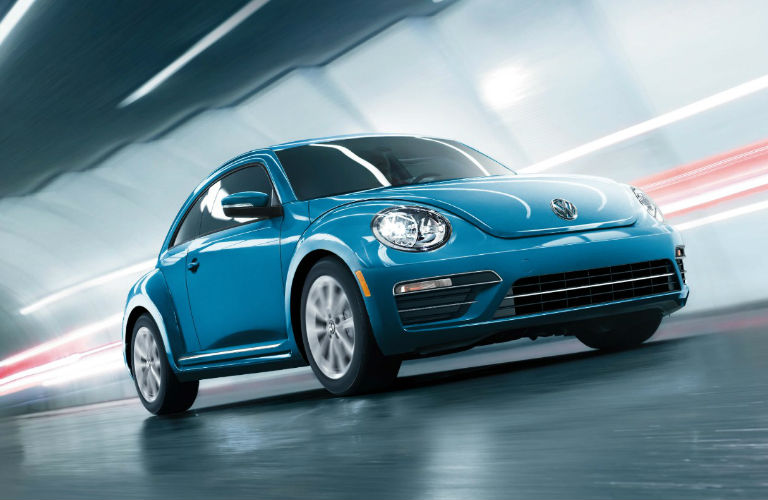 Beetle in Blue