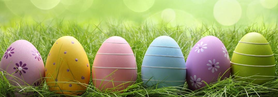 lineup of colored easter eggs in grass