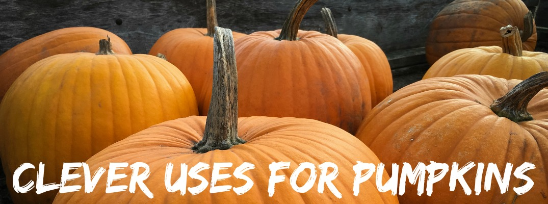 Gettin' Crafty: Four Clever Ways to Reuse your Pumpkins