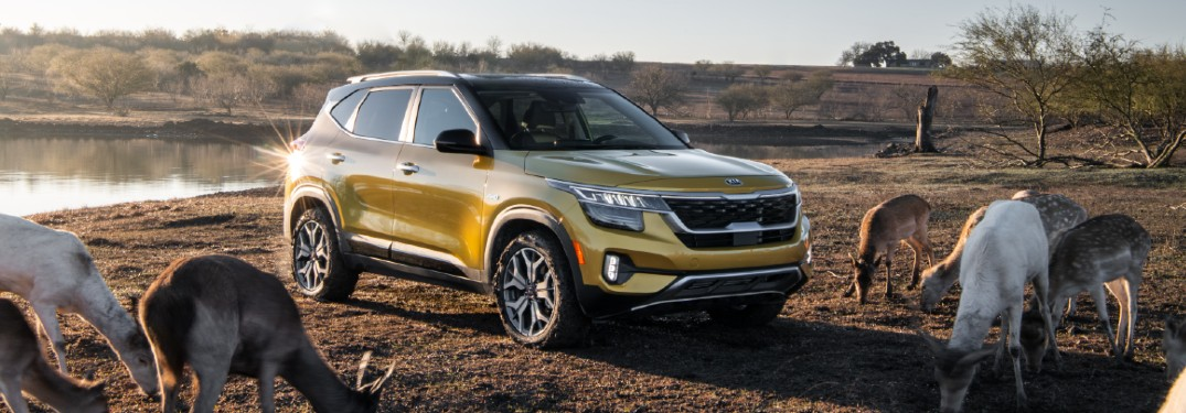 Learn about the engine options for the 2021 Kia Seltos!