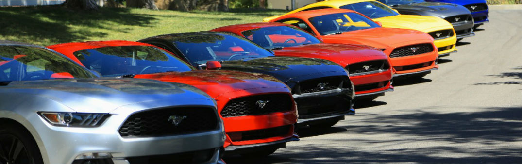 what s the most popular mustang color holiday ford