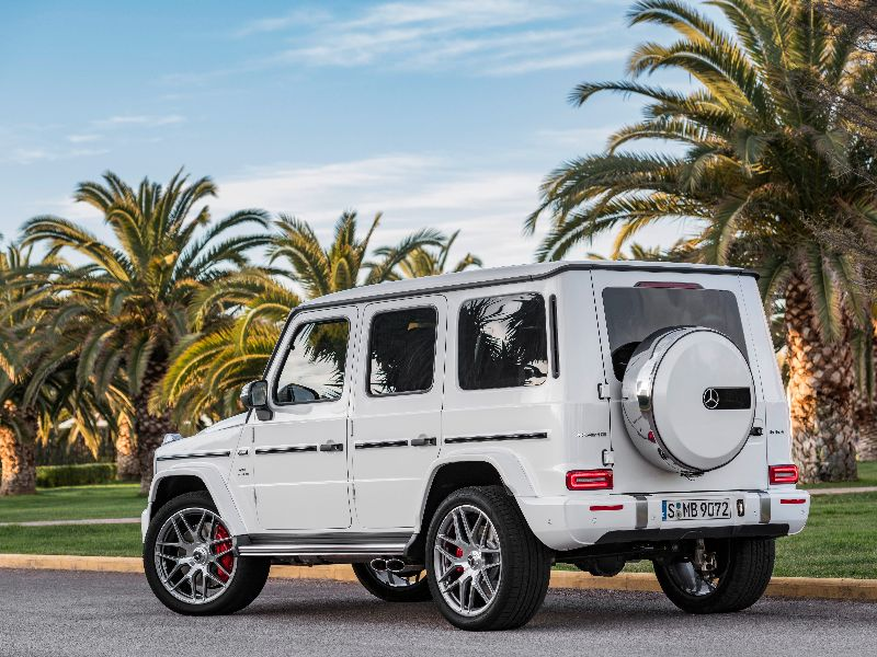2019 mercedes-amg g63 parked by palm trees