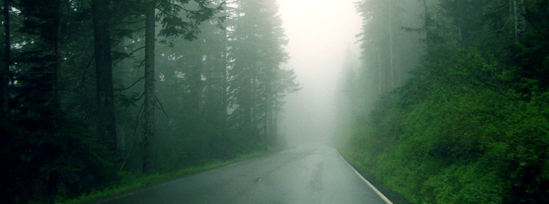 tips for driving in fog in wisconsin