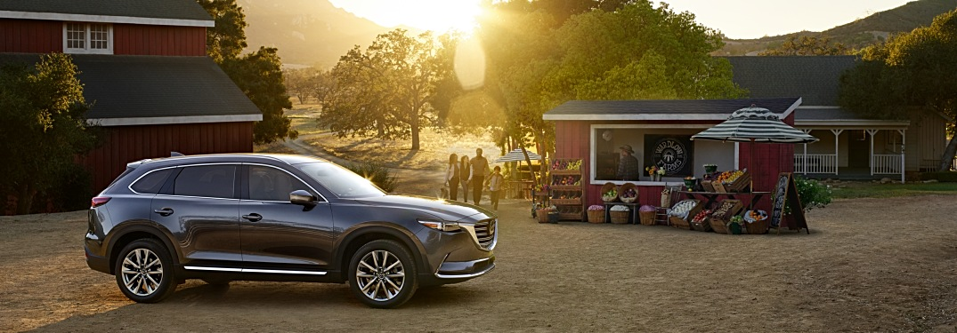 2019 Mazda CX-9 silver side view at a farmers market