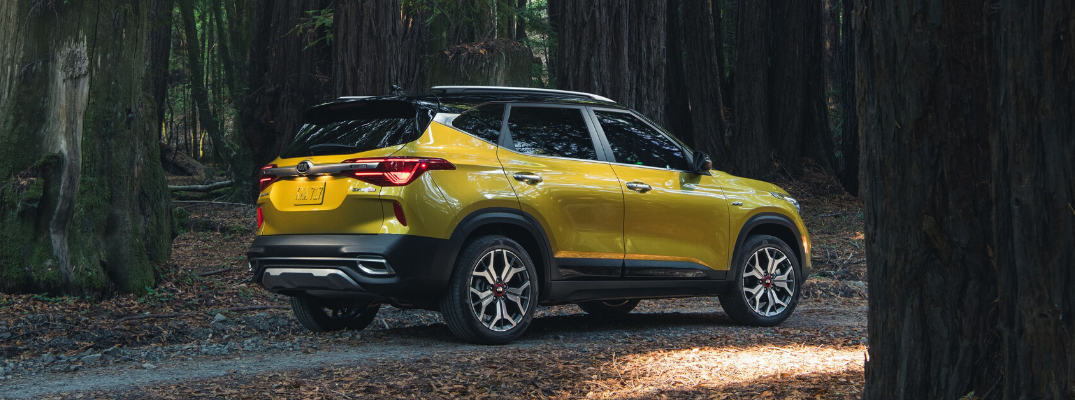 Rear view of yellow 2021 Kia Seltos parked on forest road