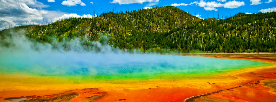 Grand Prismatic Spring in Yellowstone National Park with colorful water caused by bacteria