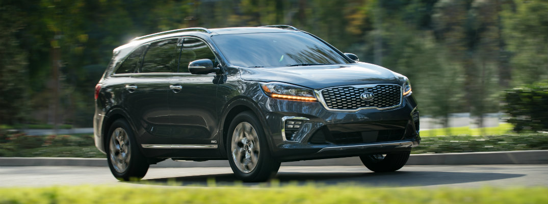 Black 2019 Kia Sorento in a park