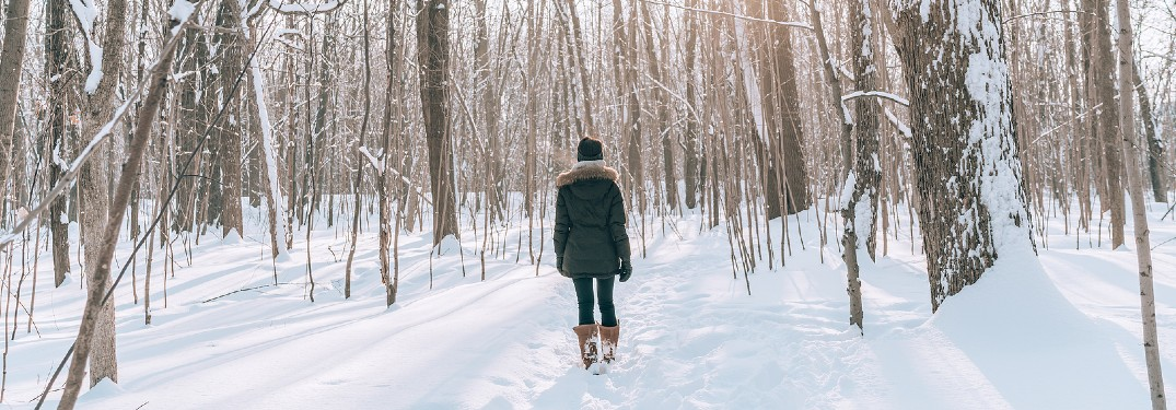 person hiking in winter forest trail
