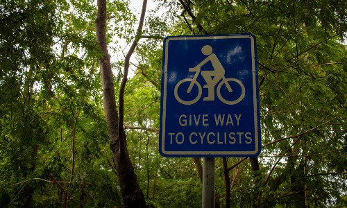blue cyclist sign in green forest