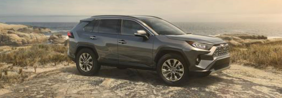 2019 Toyota RAV4 in gray