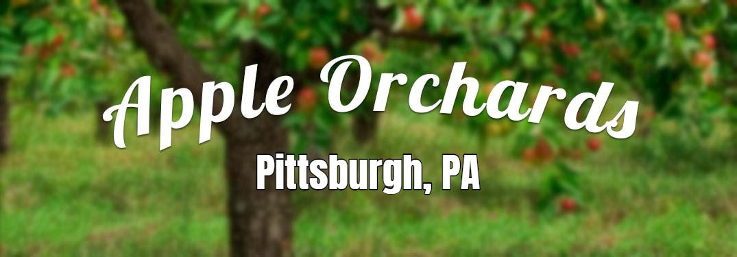 Apple Orchards in Pittsburgh PA