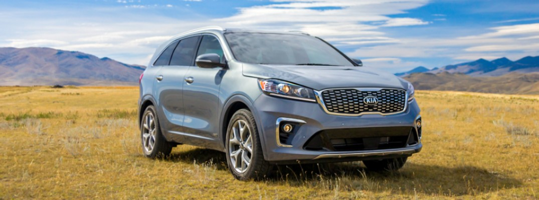 2020 Kia Sorento in a field