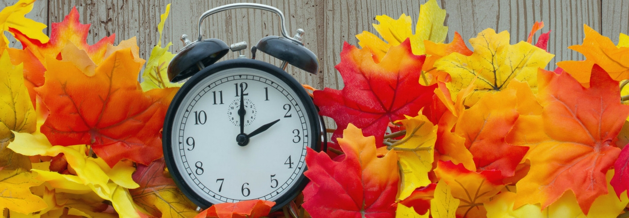 How Zimbrick Can Assist with Daylight Saving Time