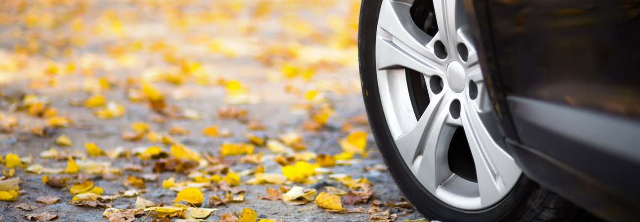 A close-up of a car tire on leaf-covered pavement featured in a blog about fall car care