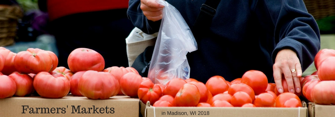 Farmers markets in Madison, WI 2018, text on an image of a woman hand selecting tomatoes