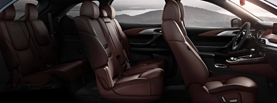 How to Clean 2016 Mazda CX-9 Nappa Leather Seats