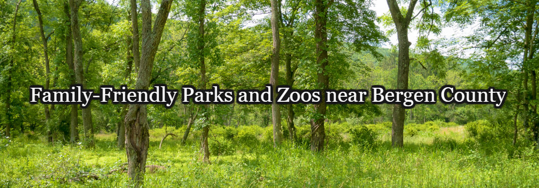 Family-Friendly Parks and Zoos near Bergen County