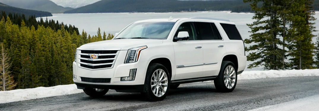 Driver side exterior view of a white 2019 Cadillac Escalade