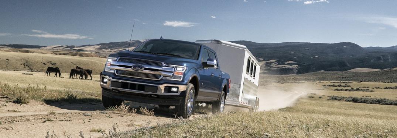 2020 F-150 pulling a livestock trailer