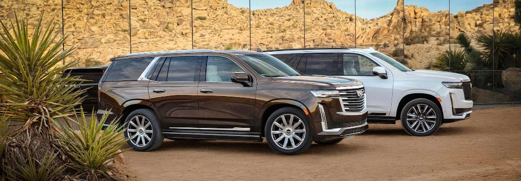 Two 2021 Cadillac Escalade vehicles parked by each other