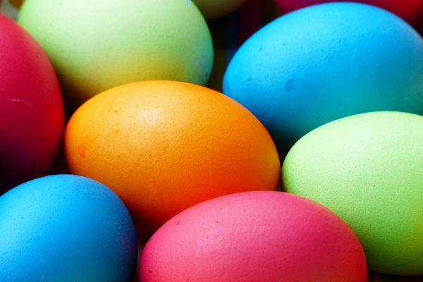 Egg Hunting In Long Island