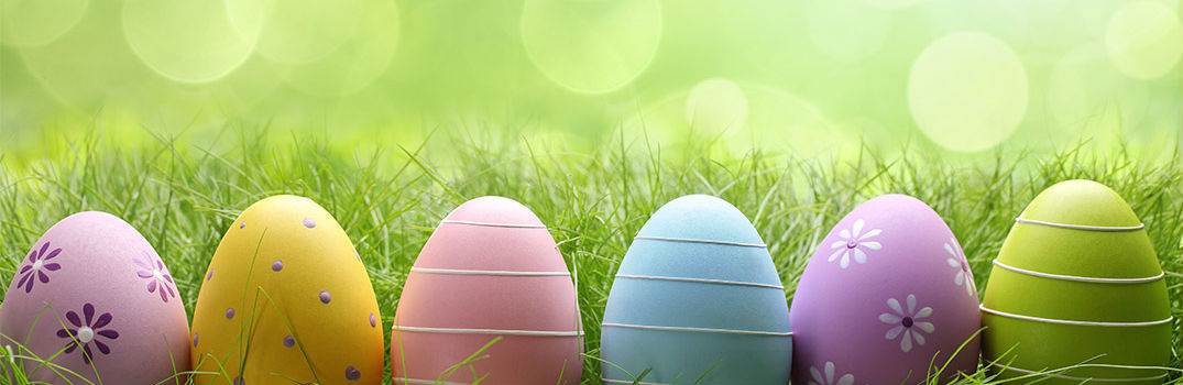 Colorful Easter Eggs resting in Grass