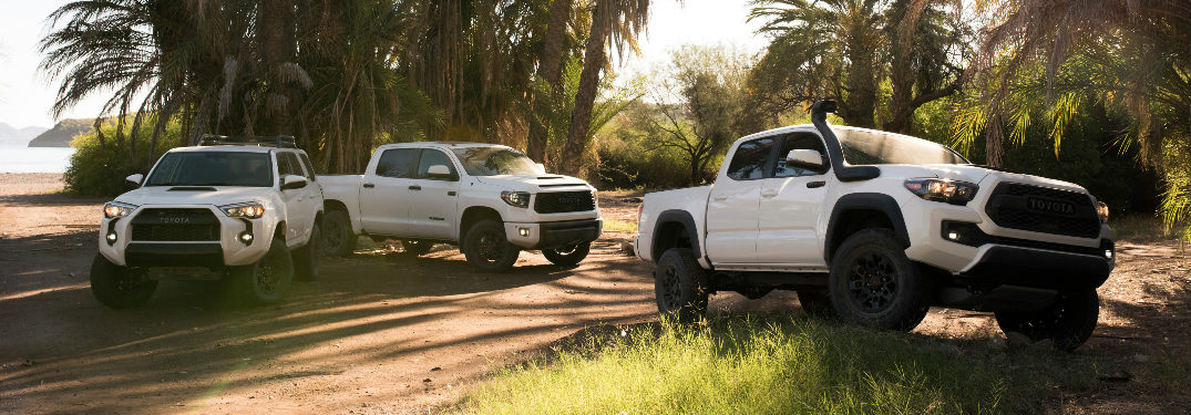 2019 Toyota TRD Pro lineup in white parked under palm trees