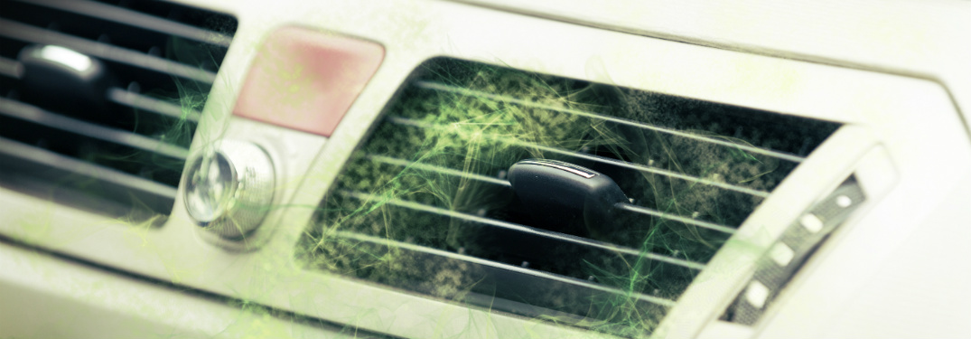 3 Easy Ways To Keep Your Car Smelling Fresh Naturally - Fox