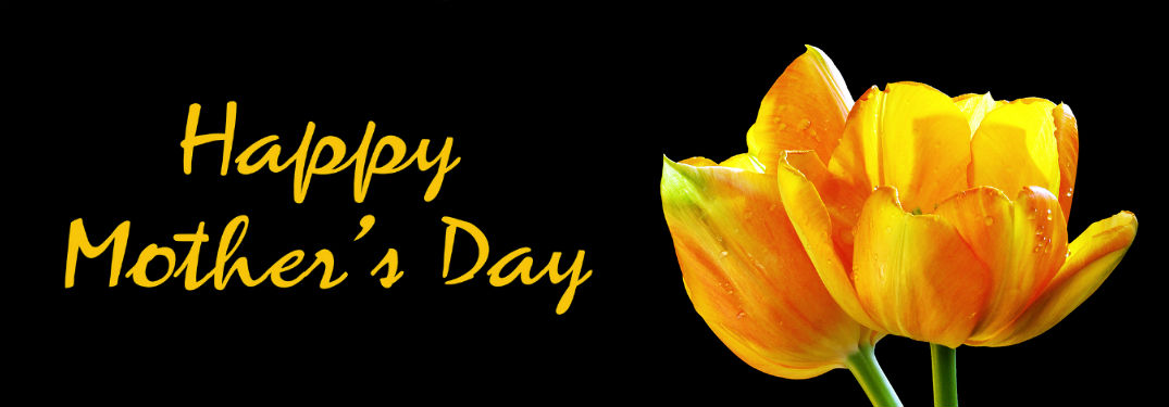 Last Minute Gifts for Mother's Day with image of yellow/orange tulips