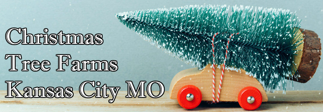 toy car holding a Christmas tree