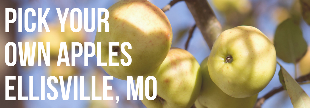 Where to pick your own apples in the west Saint Louis Area