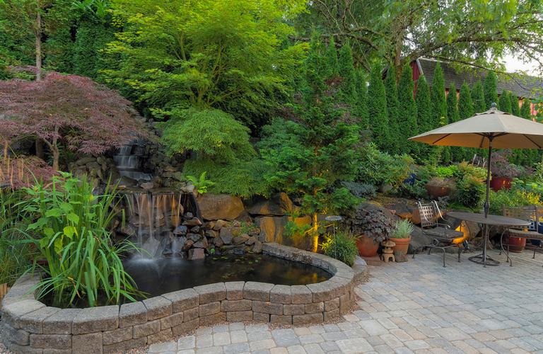 Lovely backyard landscaping and garden