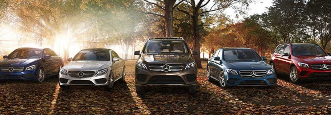 Lineup of Mercedes-Benz vehicles parked outside by leaves