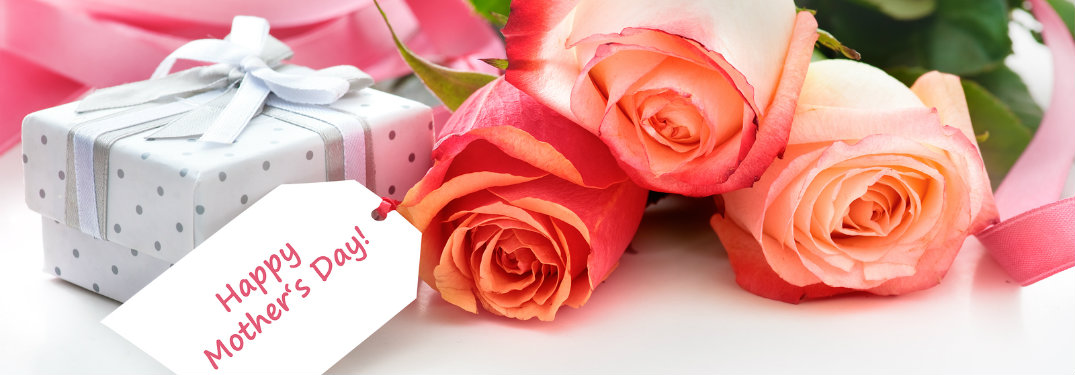 pink roses, mothers day gift
