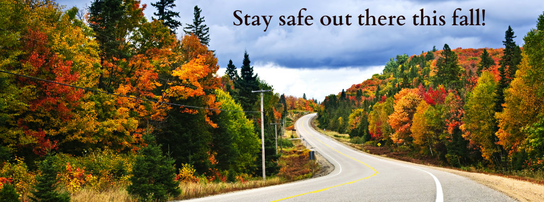 Tips For Safe Fall Driving In Angola In