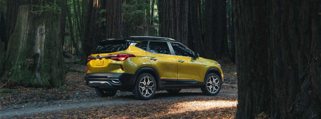 Are you ready for the new lineup of Kia crossover SUVs?
