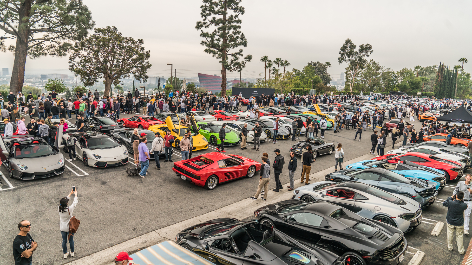 SUNSET GT - CARS AND COFFEE REINVENTED - NOVEMBER