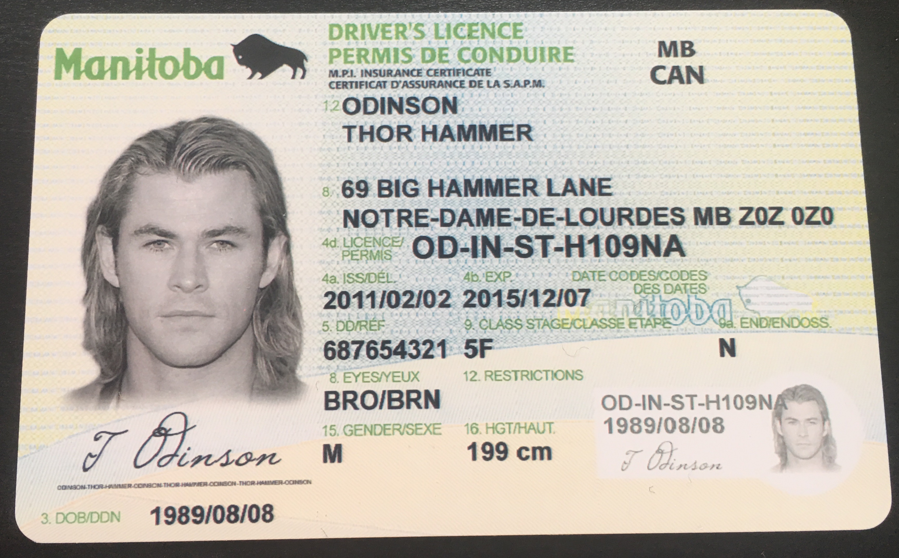 Thors-drivers-license - - Mazda Crown - Thors-drivers-license Thors-drivers-license Mazda Crown