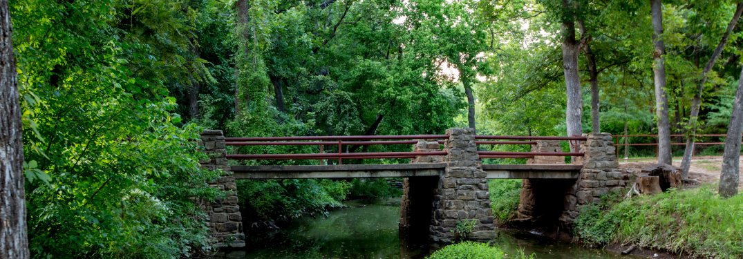 A bridge over a stream in the woods