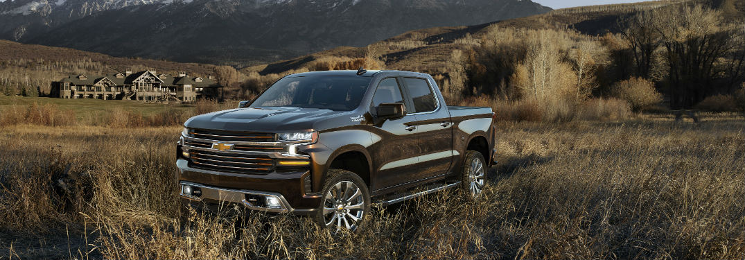 2019 Chevy Silverado 1500 parked in a field of long grass