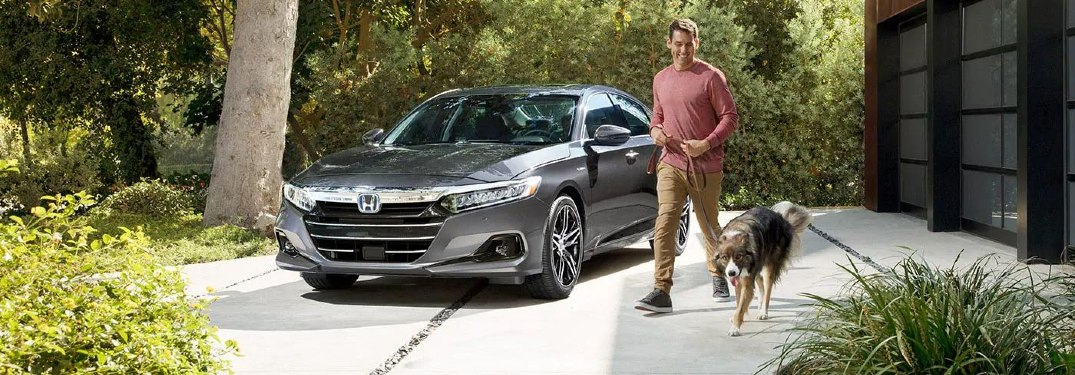 Person and dog walking in front of 2021 Accord Hybrid