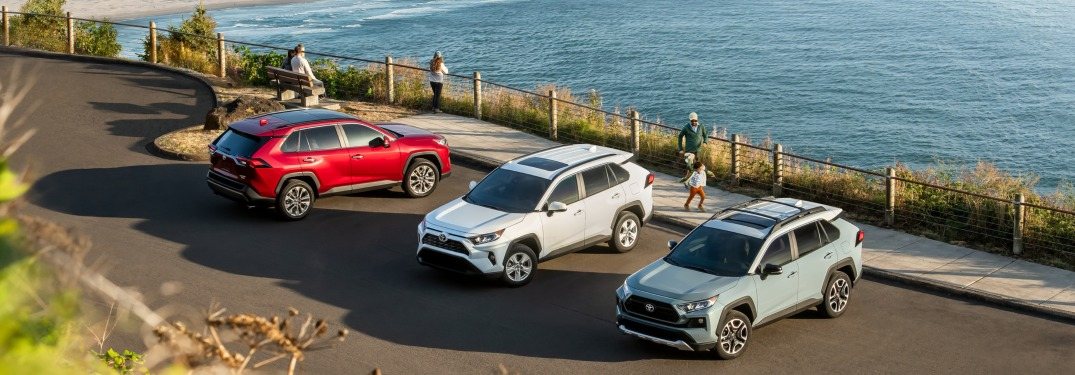 Check out Which Colors the New RAV4 Comes in