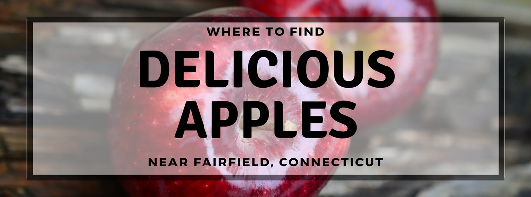 Best Apple Orchards Near Fairfield, CT