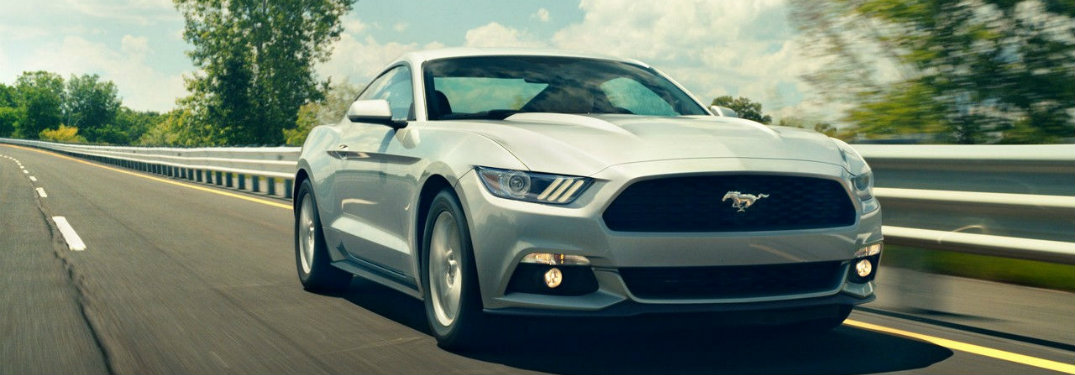 When it Comes to the Ford Mustang, Performance is Standard