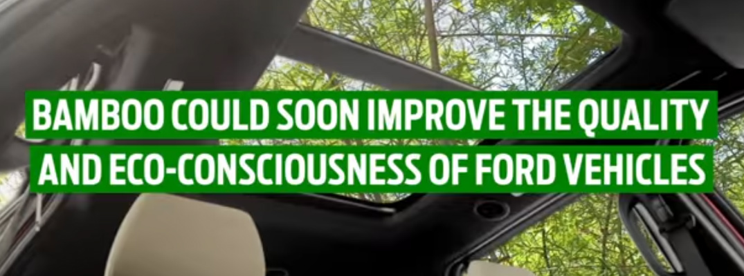 Video: Ford Shows Potential Use of Bamboo for Eco-Friendly Vehicles