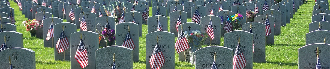small image of military cemetery with flags