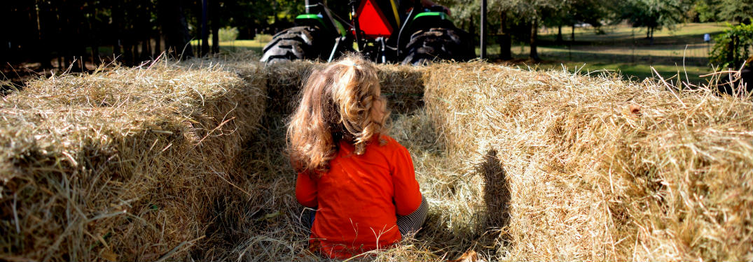 little girl on hayride
