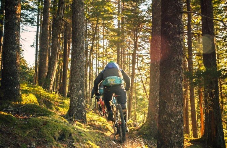 Man riding cycle in a biking trail
