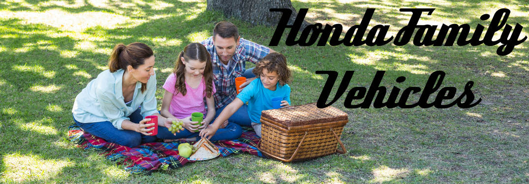 What is the best Honda for families? Image of a family picnic