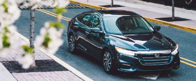 2019 Honda Insight exterior front fascia and passenger side on road with flowering tree